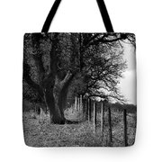 Inside Or Out Tote Bag