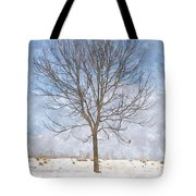 Inspirations 3 Tote Bag