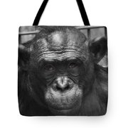 Intelligent Eyes Tote Bag