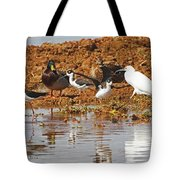 Inter-species Meeting Place Tote Bag
