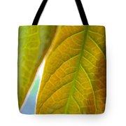 Interesting Leaves - Digital Painting Effect Tote Bag