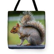 Interesting Tail Tote Bag