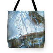 Interior Issues  Tote Bag