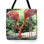 Intertwined Flamingoes Tote Bag