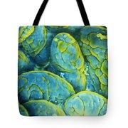 Intestinal Microvilli Sem Tote Bag by Spl