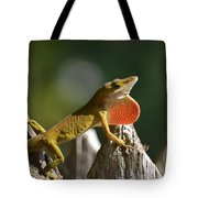 Intimidated Anole Tote Bag