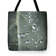Into Every Life A Little Rain Must Fall Tote Bag