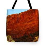 Into The Canyon Tote Bag