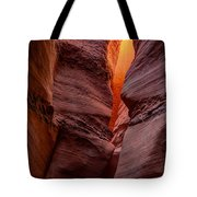 Into The Cravasse Tote Bag