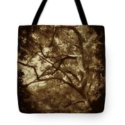 Into The Dark Wood Tote Bag