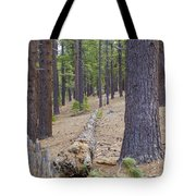 Into The Forest Tote Bag