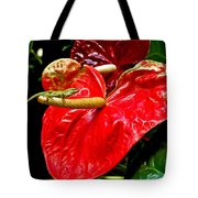 Into The Heart Tote Bag