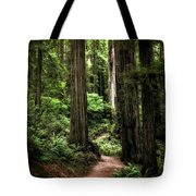 Into The Magical Forest Tote Bag