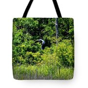 Into The Sunlight He Rises Tote Bag