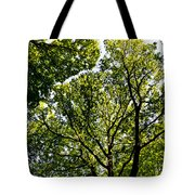 Into The Trees Tote Bag