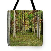 Into The Void Tote Bag by Frozen in Time Fine Art Photography