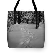 Into The Woods Pisgah Forest Black And White Tote Bag