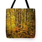 Into The Woods We Go  Tote Bag