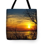 Intricate Details Tote Bag