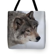 Intrigued Tote Bag