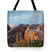Inverness Beach Rocks  Tote Bag