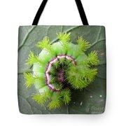 Io Caterpillar Tote Bag