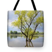 Iowa Flood Plains Tote Bag