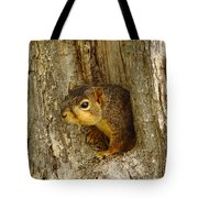 iPhone Squirrel In A Hole Tote Bag
