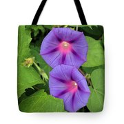 Ipomea Acuminata Morning Glory Tote Bag