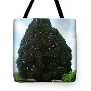 Iran Yazd Cedar Tree Tote Bag