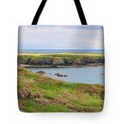 Ireland Coastline Panorama Tote Bag