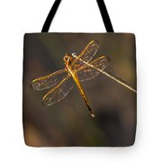 Iridescent Dragonfly Wings Tote Bag