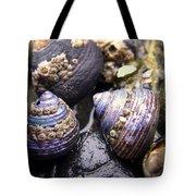 Iridescent Purple Seashells Tote Bag