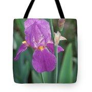 Iris 6 Tote Bag