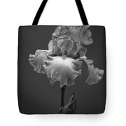 Iris After The Rain Tote Bag