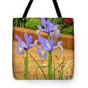 Iris Along The Walk Tote Bag