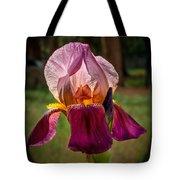 Iris In The Spotlight Tote Bag