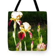 Iris In The Sun Tote Bag