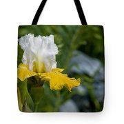 Iris Pictures 169 Tote Bag