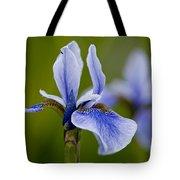 Iris Pictures 185 Tote Bag