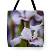 Iris Pictures 195 Tote Bag