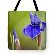 Iris Pictures 219 Tote Bag
