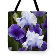 Iris Purple And White Fine Art Floral Photography Print As A Gift Tote Bag