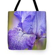 Iris Purple Pepper Tote Bag