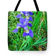 Iris Swirl Tote Bag