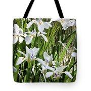 Irises Dancing In The Sun Painted Tote Bag