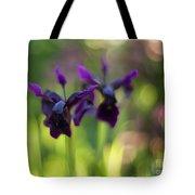 Irises Depth Tote Bag