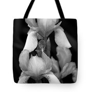 Irises In Black And White Tote Bag