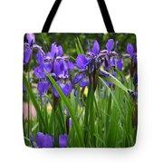 Irises In Spring Tote Bag