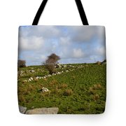 Irish Farms And Fields Tote Bag